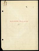 view Alouatta (Primates), Barro Colorado Island, Panama, 1958-1960 digital asset number 1