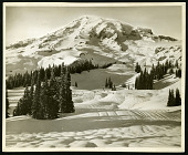 view Glaciers - Upper Paradise Valley and the Mountain in winter, Mount Rainier National Park digital asset number 1
