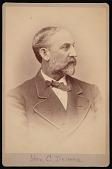 view Portrait of Charles Devens (1820-1891) digital asset number 1