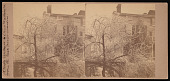 view Titian Ramsay Peale's G Street Residence, Washington, D.C. - View From Back Parlor Window digital asset number 1