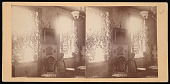view Titian Ramsay Peale at G Street Residence, Washington, D.C. - Parlor digital asset number 1