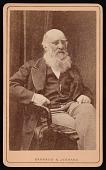 view Portrait of J. H. Silbert digital asset number 1