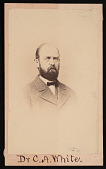 view Portrait of Charles Abiathar White (1826-1910) digital asset number 1
