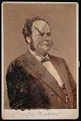 view Portrait of William Windom (1827-1891) digital asset number 1