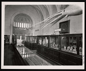 view Exhibition of Marine Invertebrates, Smithsonian Institution Building, or Castle digital asset number 1