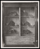 view Minerals Exhibit, SI Commons, Smithsonian Institution Building, or Castle digital asset number 1