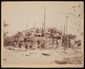 view National Zoological Park, Construction - Animal House (Lion House) digital asset number 1