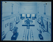 view Vertebrate Fossil Exhibits, Division of Paleontology, Natural History Building digital asset number 1