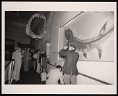 "view ""Shark!"" Exhibition Opening, National Museum of Natural History digital asset number 1"