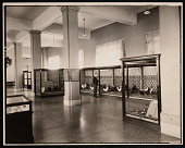 view Division of Birds Exhibits, Natural History Building digital asset number 1