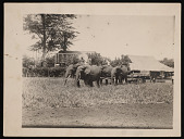 view Riders and Elephants Pulling Carts, Africa digital asset number 1