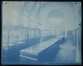 view Exhibition of Marine Invertebrates, Smithsonian Institution Building, or Castle digital asset number 1