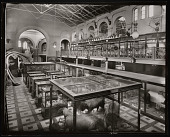 view Mammals Exhibits, South Hall, United States National Museum digital asset number 1