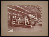view Louisiana Purchase Exposition, St. Louis, Missouri, 1904 digital asset number 1