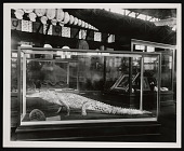 view Louisiana Purchase Exposition, St. Louis, Missouri, 1904 digital asset number 1