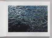 view Dictionary of water / Roni Horn digital asset number 1