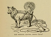 view Dog harness, Central Eskimo from Bulletin -- Smithsonian Institution, Bureau of American Ethnology. digital asset number 1