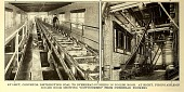 view Conveyor distributing coal to overhead bunkers in boiler room from Electric railway journal. digital asset number 1
