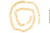 view Scrub Python, Python, Rock, Rock Python digital asset number 1