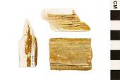 view Coniferous Wood digital asset number 1