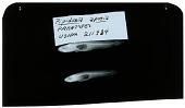 view Gobiopsis aporia Lachner & McKinney digital asset number 1