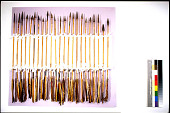 view Iron Pointed Arrows (10) digital asset number 1