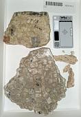 view Frag. Mosaic Pavement digital asset number 1