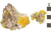 view Arsenate Mineral Mimetite digital asset number 1