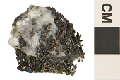 view Native Element Silver digital asset number 1