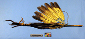 view Feathered Stick Used In Dancing (Pipestem) digital asset number 1