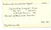 view Euthemisto compressa digital asset number 1