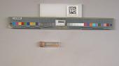 view NSF ADBC EPICC TCN digital asset number 1