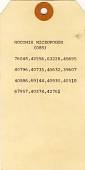 view Nocomis micropogon digital asset number 1