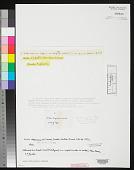 view Nostoc depressum H.C. Wood digital asset number 1