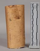 view Birch-Bark Scroll, Writing digital asset number 1