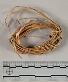 view Sweet-Grass (Wa-U-Li-Mer-Kway) digital asset number 1
