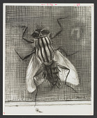 view Photographs of Artwork, Miscellaneous digital asset: Photographs of Artwork, Miscellaneous