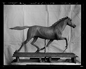 view Amory C. Simons photographic materials digital asset: Glass Plate Negatives