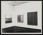 view Alma W. Thomas (1972), Whitney Museum of American Art, Photographs digital asset: Alma W. Thomas (1972), Whitney Museum of American Art, Photographs