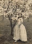 view Lillian Evanti pose by Cherry Blossom trees digital asset: Lillian Evanti pose by Cherry Blossom trees