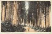 view Japanese Missionary Postcards digital asset: Japanese Missionary Postcards