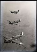 view Curtiss P-40 Warhawk digital asset: Curtiss P-40 Warhawk