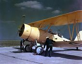 view Naval Aircraft Factory N3N digital asset: Naval Aircraft Factory N3N