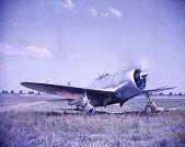 view Republic P-47 Thunderbolt digital asset: Republic P-47 Thunderbolt