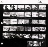view [Contact Sheet, Roll 060] Newark NJ Control Tower.  American Airlines DC-3s.  1937 digital asset: [Contact Sheet, Roll 060] Newark NJ Control Tower.  American Airlines DC-3s.  1937