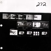 view [Contact Sheet, Roll 272] Grumman G-21 Amphibian.  Stinson on floats, Colonial Airlines DC-3.  Link Trainer.  [Circa 1935-1940.] digital asset: [Contact Sheet, Roll 272] Grumman G-21 Amphibian.  Stinson on floats, Colonial Airlines DC-3.  Link Trainer.  [Circa 1935-1940.]