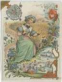 view Spain Carnation and German Wildflower [trade card] digital asset: Spain Carnation and German Wildflower [trade card]