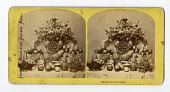 view Food : stereographs digital asset: Food : stereographs