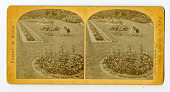 view Gardens and parks : stereographs digital asset: Gardens and parks : stereographs