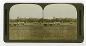 view Military imagery : stereographs digital asset: Military imagery : stereographs